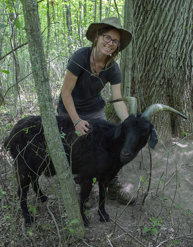 Project Manager Christine Bohn with one of her charges.