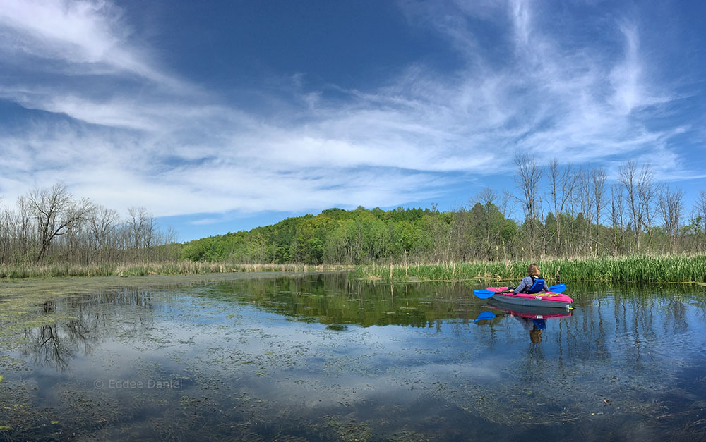 An idyllic moment on the Oconomowoc River. Loew Lake Unit, Kettle Moraine State Forest.