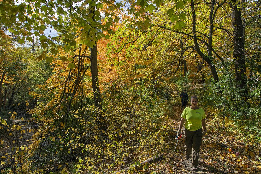 Jessica Wineburg, Mke Co Parks Trails Coordinator, on KK River Trail