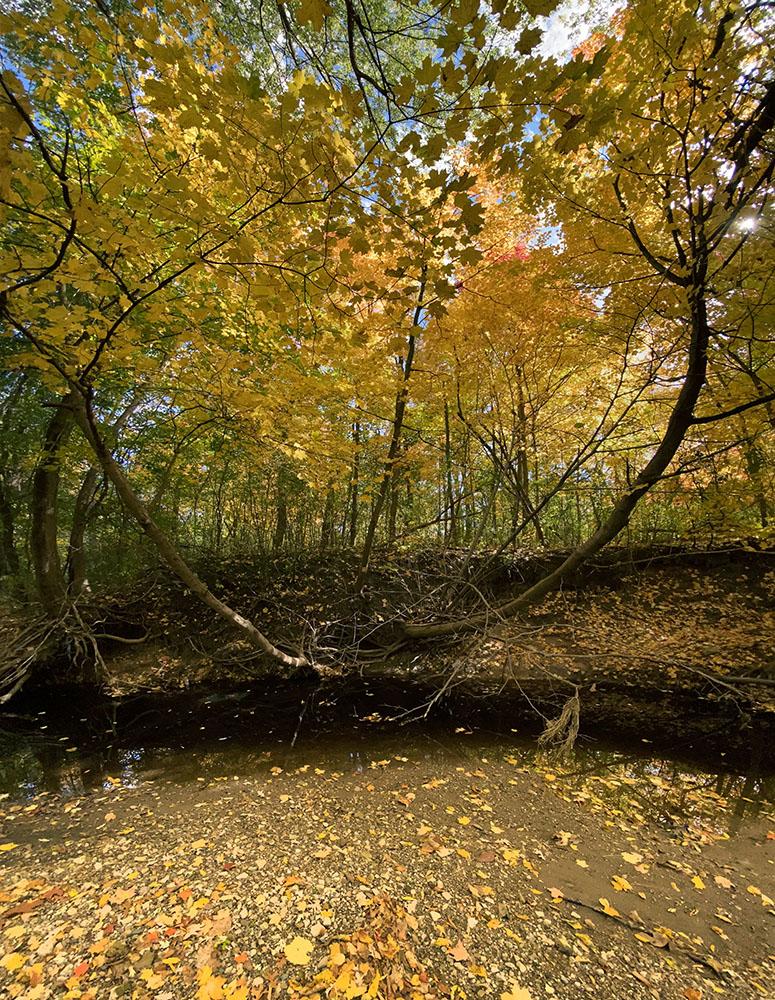 The KK River in autumn splendor