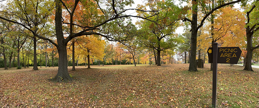 One of two picnic areas currently in Wisconsin Avenue Park.