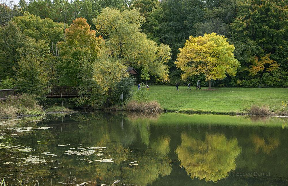 Calhoun Park pond