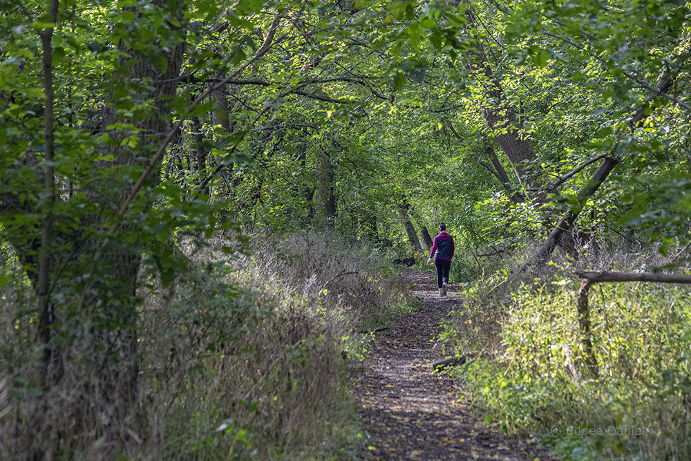 A jogger passing by on the West Bank Trail.