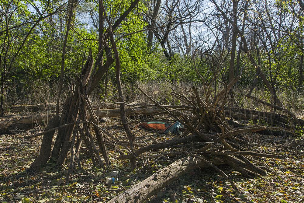 Encampment sheltered by hedge-like buckthorn