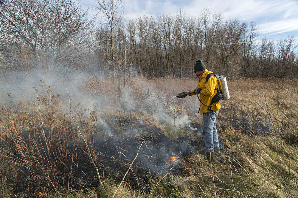 A volunteer sprays water to control the fire