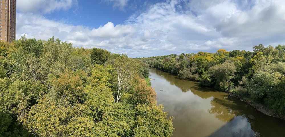 Milwaukee River from Locust St bridge