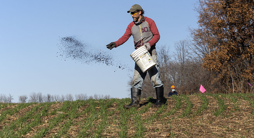 Prairie seeding