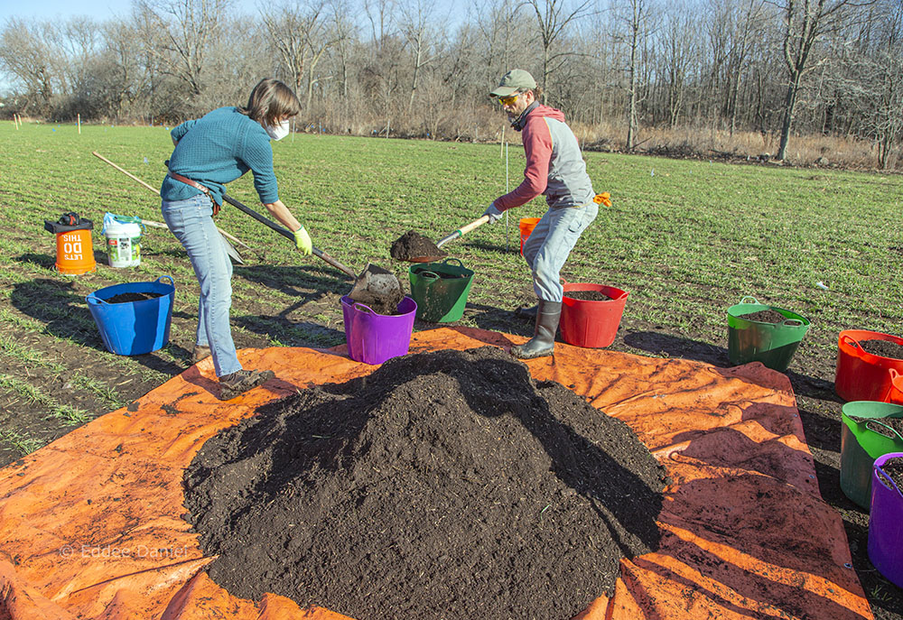 Distributing the seed mix into buckets for planting.