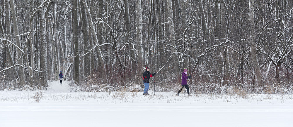 cross-country skiing in Brown Deer Park