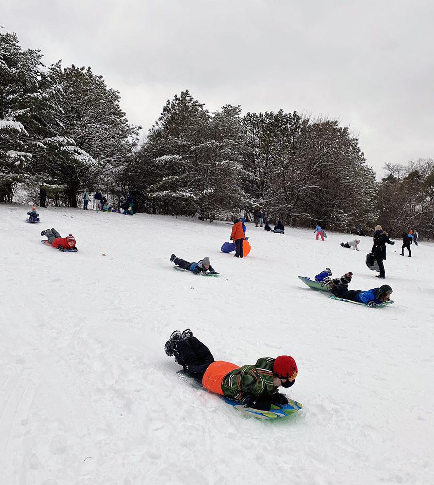 Sledding at Curry Park.