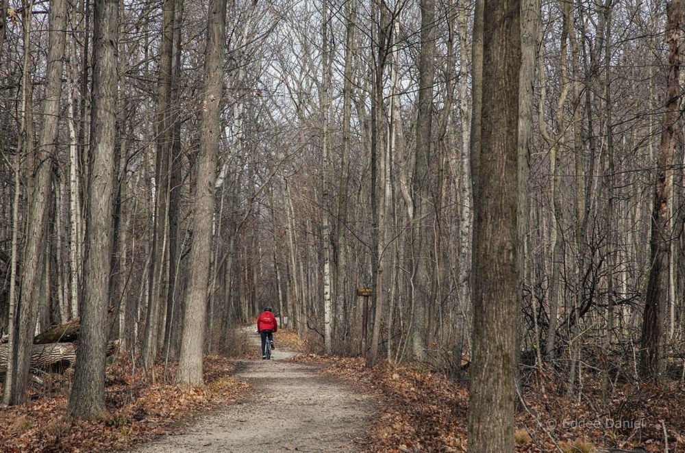 New Berlin Recreational Trail, Deer Creek Sanctuary, New Berlin