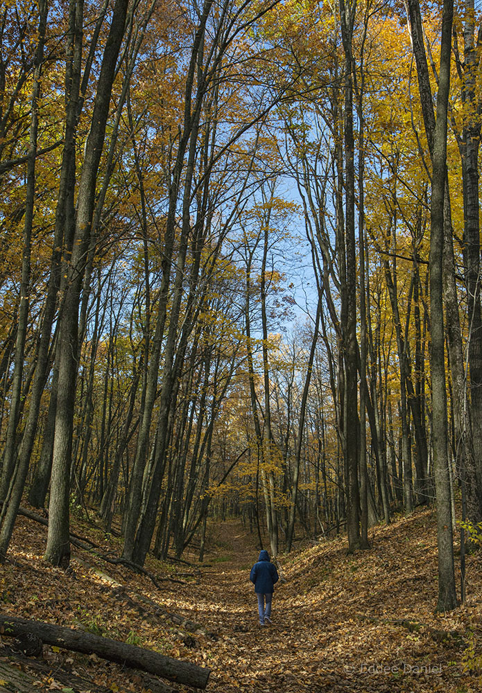 Ice Age National Scenic Trail, Glacial Blue Hills, West Bend