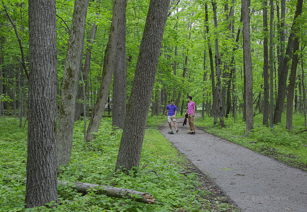 Brookfield Greenway Trail System, Mound Zion Preserve, Brookfield