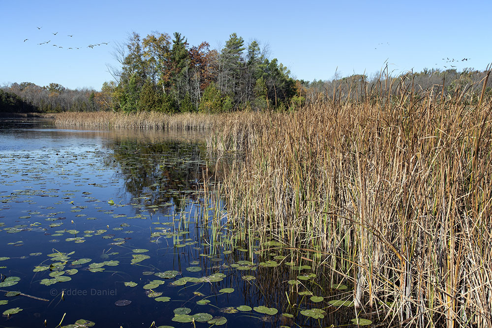 Huiras Lake State Natural Area, Ozaukee County