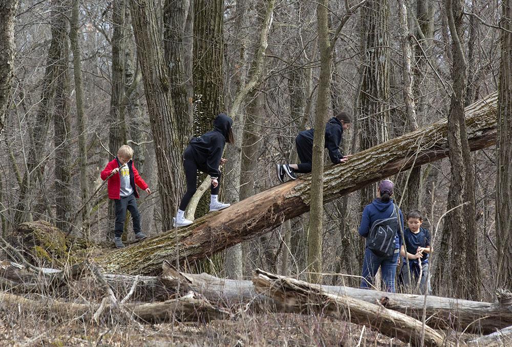 Children find a natural jungle gym at Lapham Peak State Park.